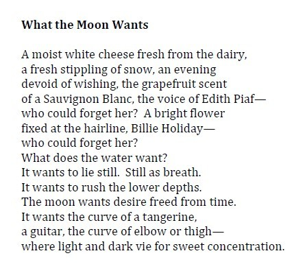 What the Moon Wants