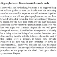 slipping between dimensions & the world ends