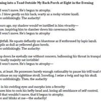 Nate Vernarski_On Running into a Toad.jpg